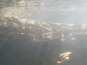 galaxy s20 waterdicht: onderwaterfoto's met galaxy s7 3